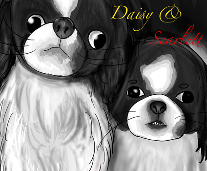 Daisy and Scarlett - for Icy by renllaw