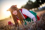 Spice and Wolf - Horo II by e-l-y-n-n