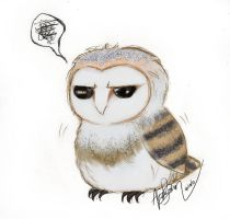 Disgruntled Owl is disgruntled by Alpha-Assassin