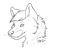 Pretty face by Wolf-mutt
