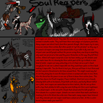 soul reapers (breed sheet) by lipazzaner
