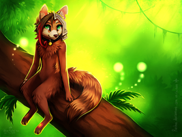 :: Up The Tree :: by Rashuu
