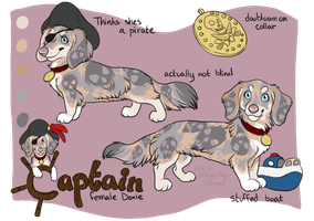 Doxie Adopt Auction by deadonarrival