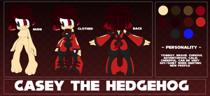 Casey The Hedgehog Reference Sheet by Keeshii-Mirun