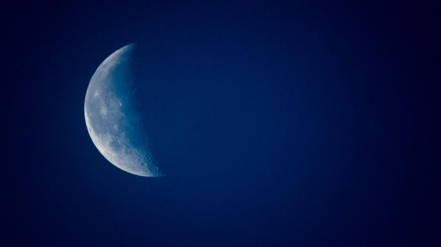 Blue Moon by Willi580