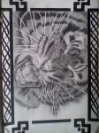 Tiger done in Graphite by michaelbryan