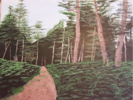 Forest Trail by PlayerBill