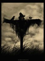 The Scarecrow by DARKNIHILISM