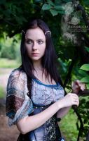 Circlet 'In the sweet amethyst embrace' by Madormidera