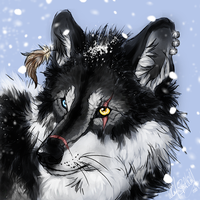 Wasp .:snow head:. by WhiteSpiritWolf
