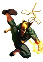 Iron Fist by Aspersio