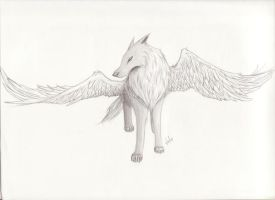 Winged Wolf by ShroomsfromHell