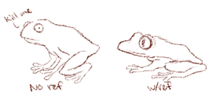 Frogs by Alisha-town