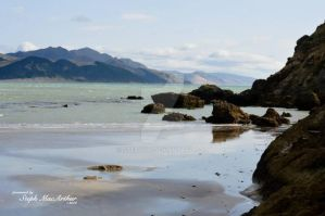 Castle Point, New Zealand by StephKM