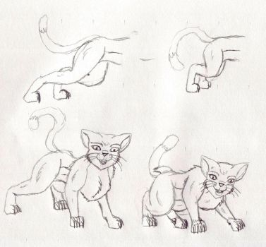 Cat TF sequence part 3 by TimidTabby84