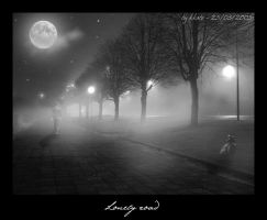 Lonely road... by kkate