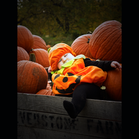 THE LEGEND OF SEEPY PUNKIN by theblueberrybush