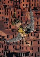 Hawkgirl over Rocinha - Dave Lowther by DaveLowther