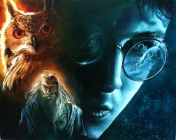 Harry potter combination by Becoz