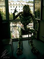 District 9 : Now we are free by Capestranus