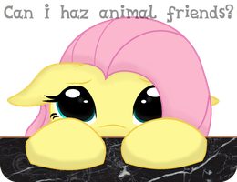 Can Flutters Haz? by iPandacakes