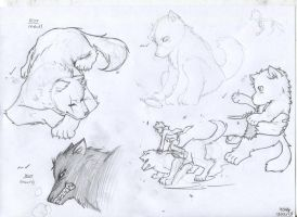 Brothers Grimm - Wolves - Practise Sketches by mangarainbow