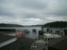 lookout over Friday Harbor by pokemontrainerjay