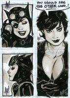 Catwoman Sketch Cards by AdamHughes