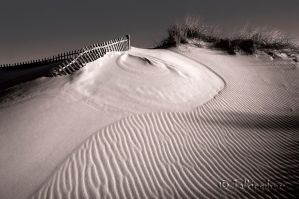 Dune by Talkingdrum