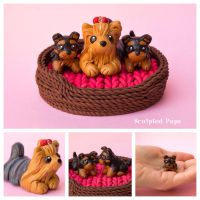 Yorkie mama with puppies by SculptedPups