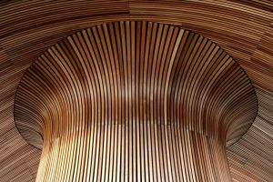 Welsh Assembly Ceiling 02 by l8