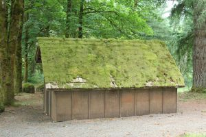 Mossy Roof by KelbelleStock