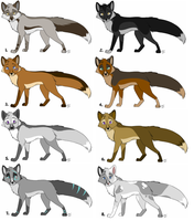 Fox adopts: batch 3 All sold by KaiserTiger