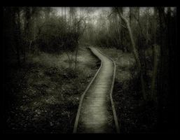 The Journey by Forestina-Fotos