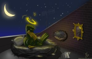 Mike at his Rooftop Roost by Haliaeetus123
