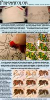 Prismacolor Tutorial by diamondsource