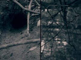 Down the rabbit hole by LeaHenning