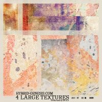 HG LARGE TEXTURES #Feb-01 by In5omn1ac