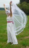 bride on a field - veil + wind 5 by indeed-stock
