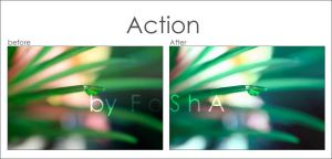 :: Action 3 :: by Al3ashAlh