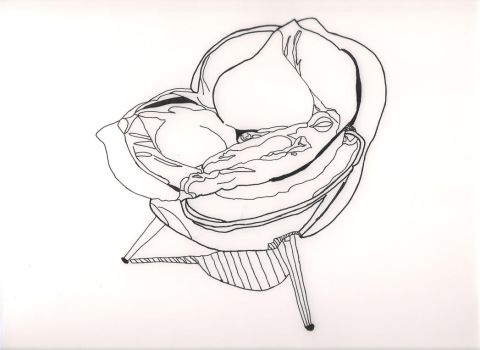 Rose Chair line art by lifeisatraipse