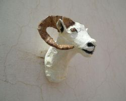 Dall Sheep Wall Mount by aakritiarts