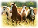 4 Horses - Realism by RealismArt