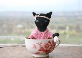 cat in cup by freedragonfly