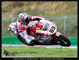 Brno- Canepa Free Practice III by QueenOfHearts21