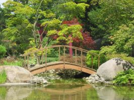 Asian Garden Bridge by poisongrin