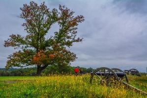 Tree and Cannons at Gettysburg 10/01/2015 by ENT2PRI9SE