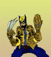 Wolverine by Thrice-fresh