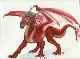 Fire dragon by Ikleyvey