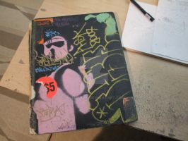 SAGEs community blackbook by Samson50